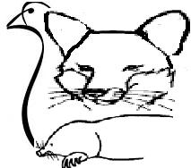 Aan dit logo herkend u de beste mollenvanger
