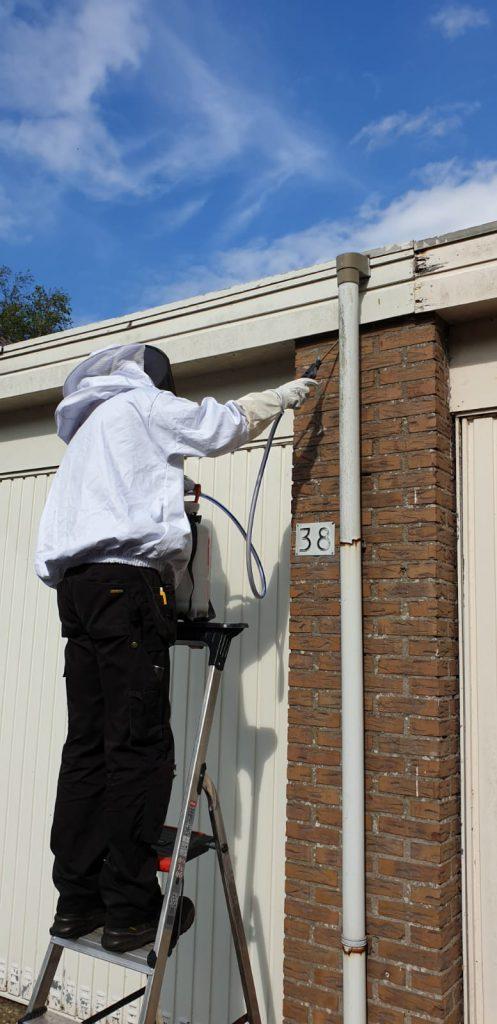 Het behandelen van wespennest van trap of ladder.